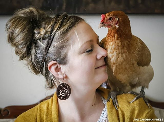 A sense of calm comes over Nikki Pike and her sons Newin, and Noah, when they are with the family's three hens Nugget, Nibble and Noodle, at their home in Calgary, Alta., Saturday, May 4, 2019.THE CANADIAN PRESS/Jeff McIntosh . . . . .  #chicken #chickens #chickensofinstagram #chickenlover #chickensofig #calgary #calgarylife #calgaryphotographer #calgarybuzz #yyc #emotionalsupport #emotionalsupportanimal #canon #shotoncanon #photojournalism #reportagespotlight