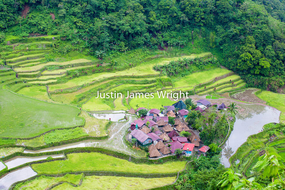 Bangaan Rice Terraces, Banaue, Ifugao, Philippines.    A UNESCO World Heritage Site   Philippine Photo # 4117  If you wish to purchase a photography print of this image, or would like to license this image please contact us using the form below.  Please kindly include the Image Title and Image Ref # in your message, we will get back to you.