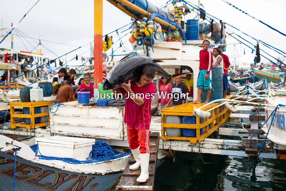General Santos Fish Port, Mindanao, Philippines   Philippine Photo 4213  If you wish to purchase a photography print of this image, or would like to license this image please contact us using the form below.  Please kindly include the Image Title and Image Ref # in your message, we will get back to you.
