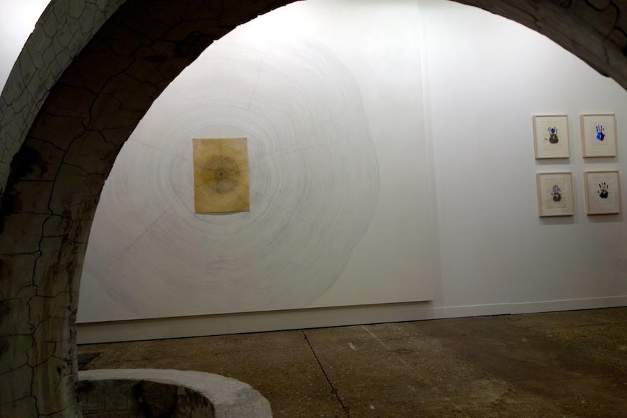 Guiseppe Penone, Propagazione, 2011