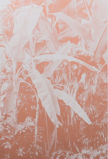 Roman Moriceau, Botanische Garten I, 2015, silkscreen made with copper