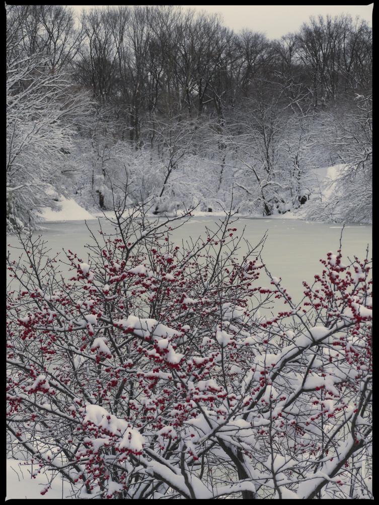 20130209_blizzard_0006.jpg
