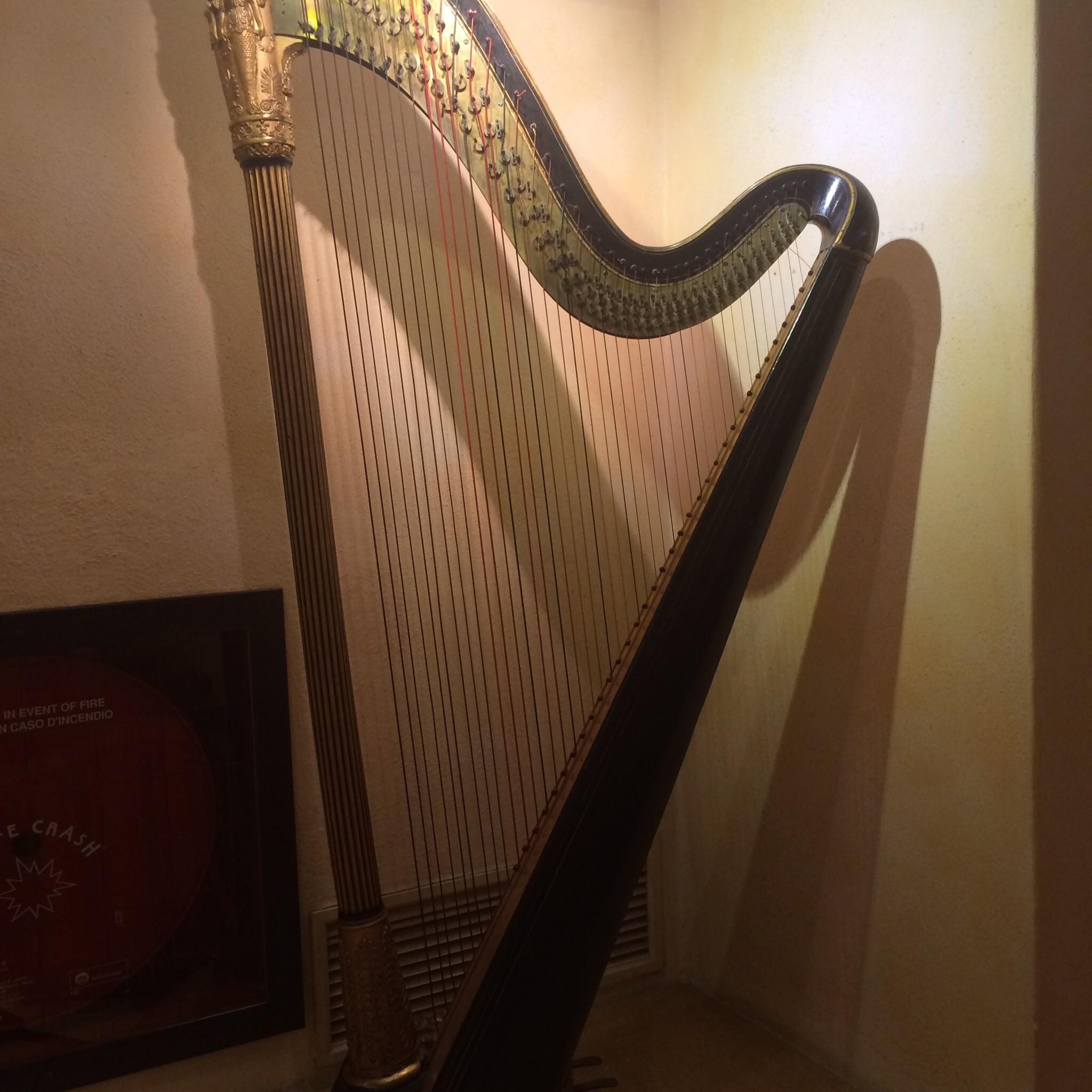The hotel harp.