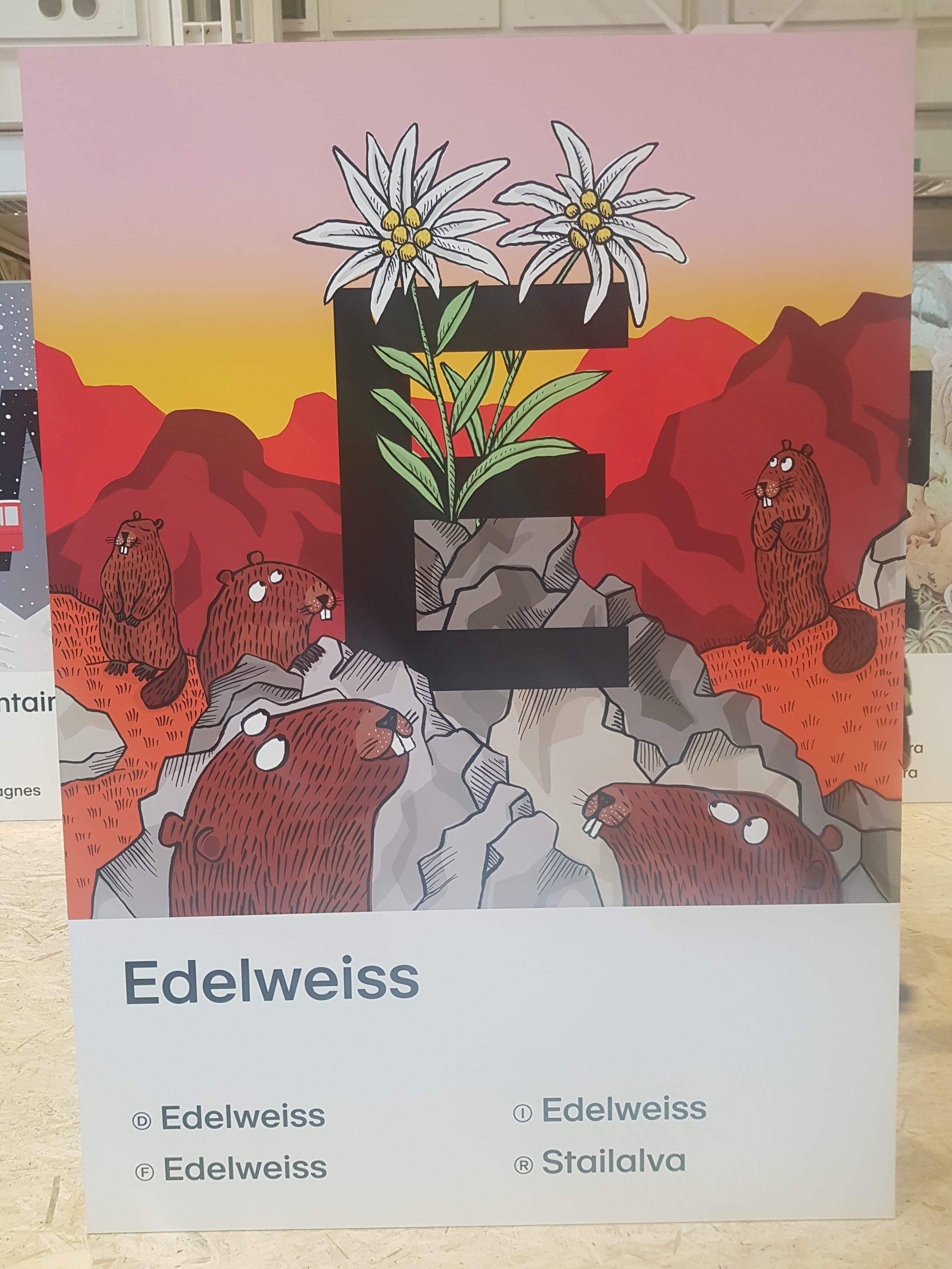 www.claudiadeweck.ch