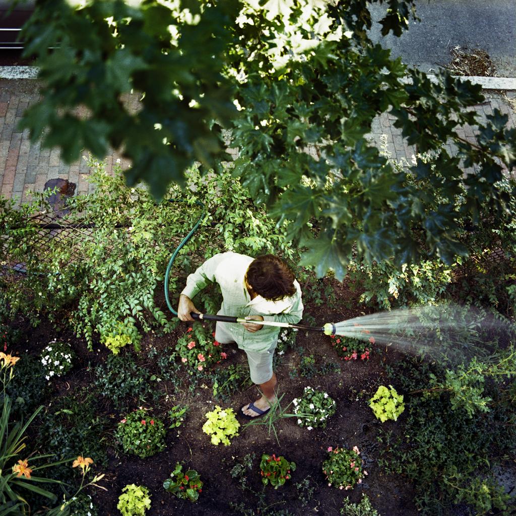 The New Garden, Doug, Cambridge, Massachusetts, 2007