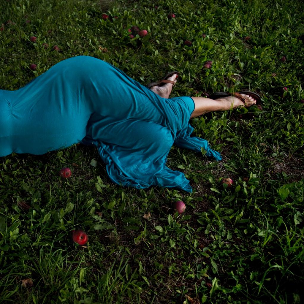 Fallen Apples, Rockport, Maine, 2011