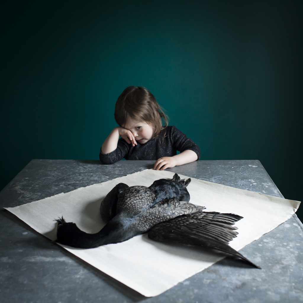 Scout &The Bird, 2014
