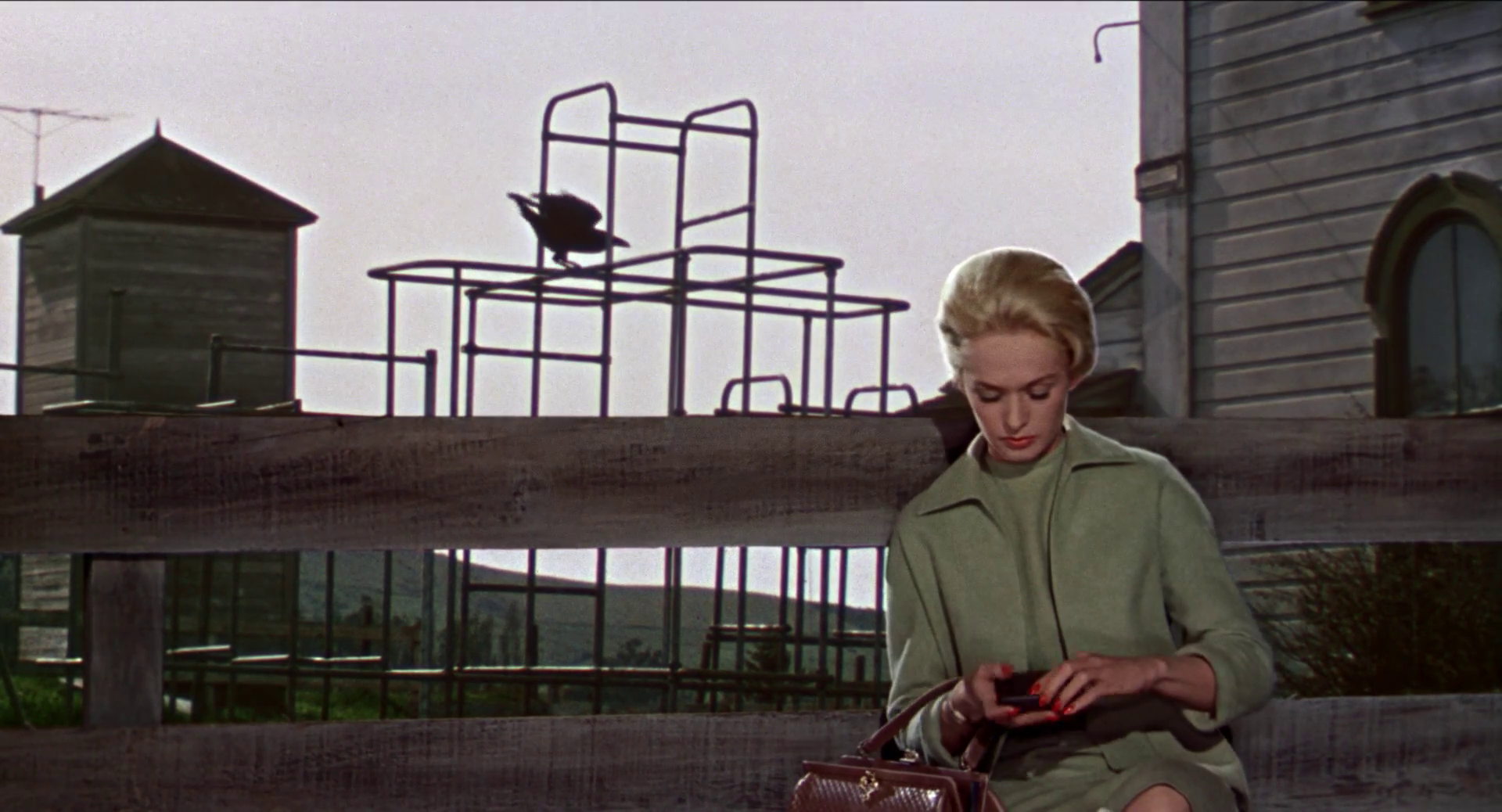 Tippi Hedren waits at the school, oblivious to the birds slowly amassing behind her in The Birds