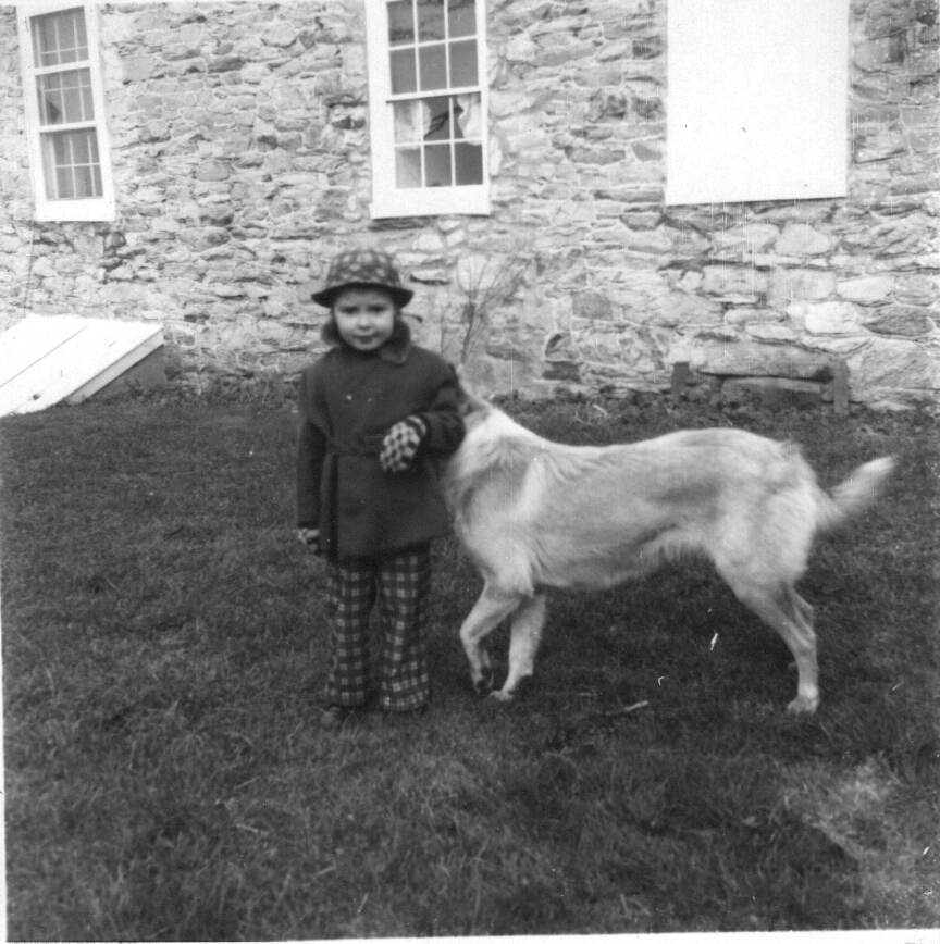 There I am with my arm hiding King's head. This photo was probably taken by my uncle Allen who made up in quantity what he lacked in quality of his photos. Once again notice the Great Stone House behind me.