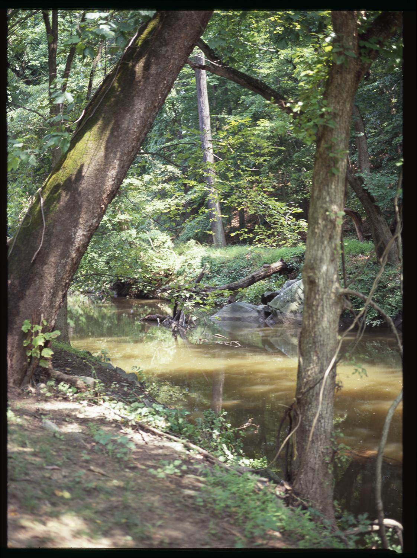 2010_River_01.jpg