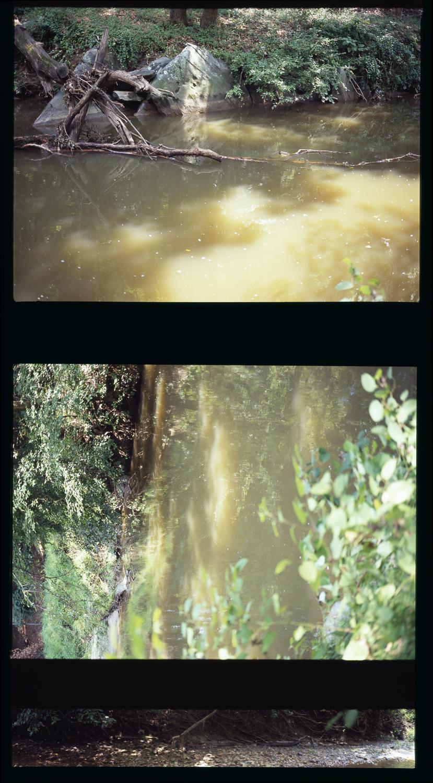 2010_river_04.jpg