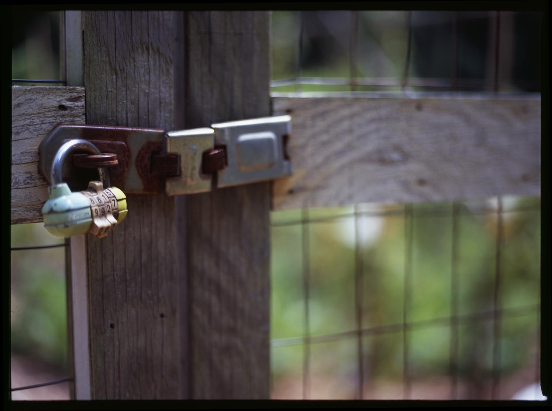 2010_summerlock.jpg