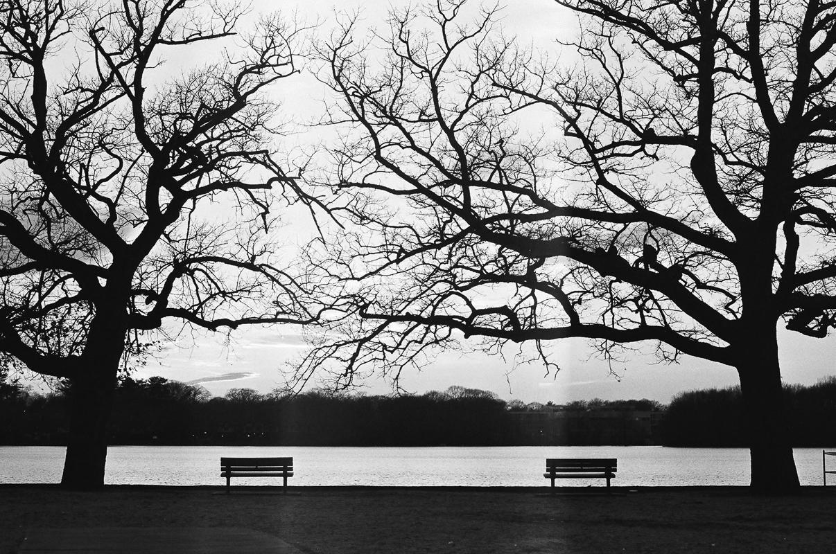 Braintree, MA  February 2016  Canon 35mm SLR  Ilford Film