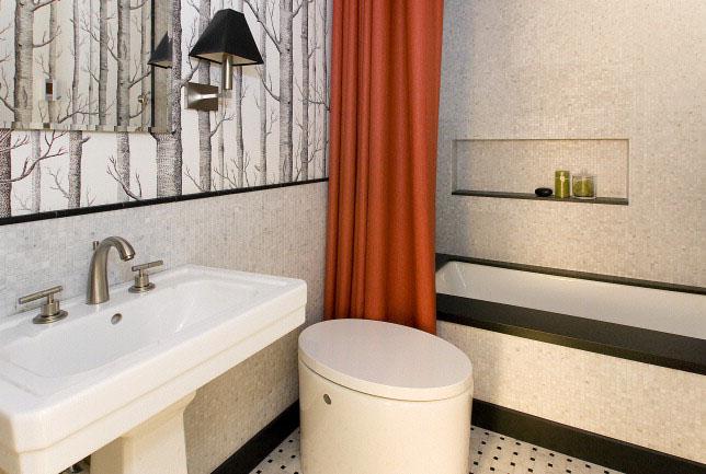 Ashbury guest bath