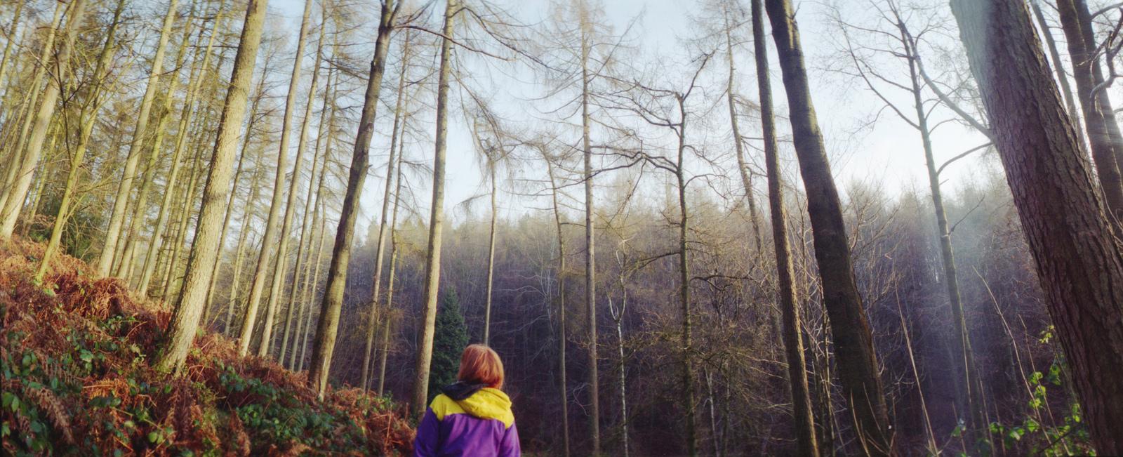 analog_film_cameras_101.jpg