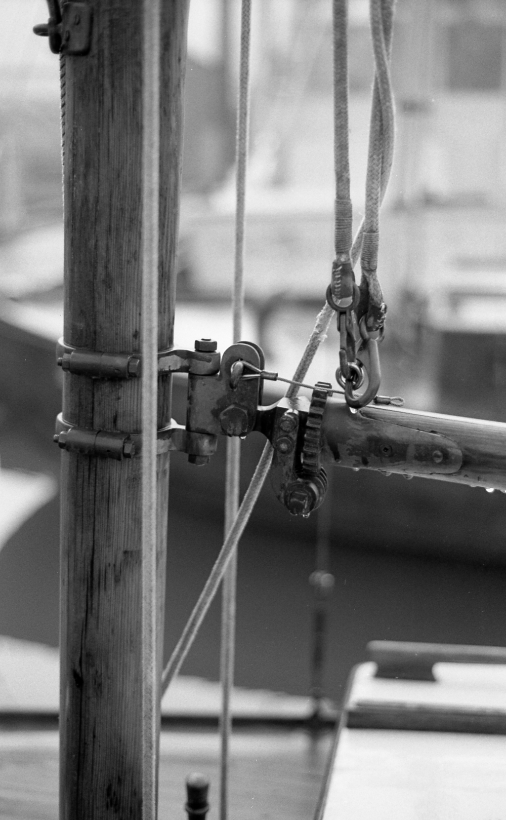 woodenBoat-spxi-400tx-004-1024.jpg