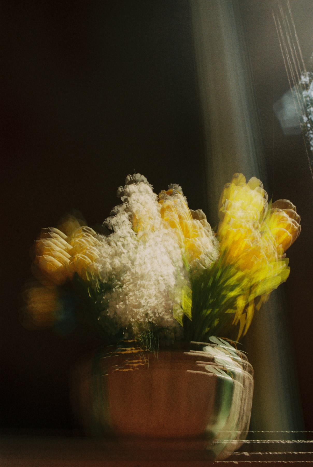 Monet by multiexposure | Canon AE1 Kodak ProImage 100 | Efrain Bojorquez