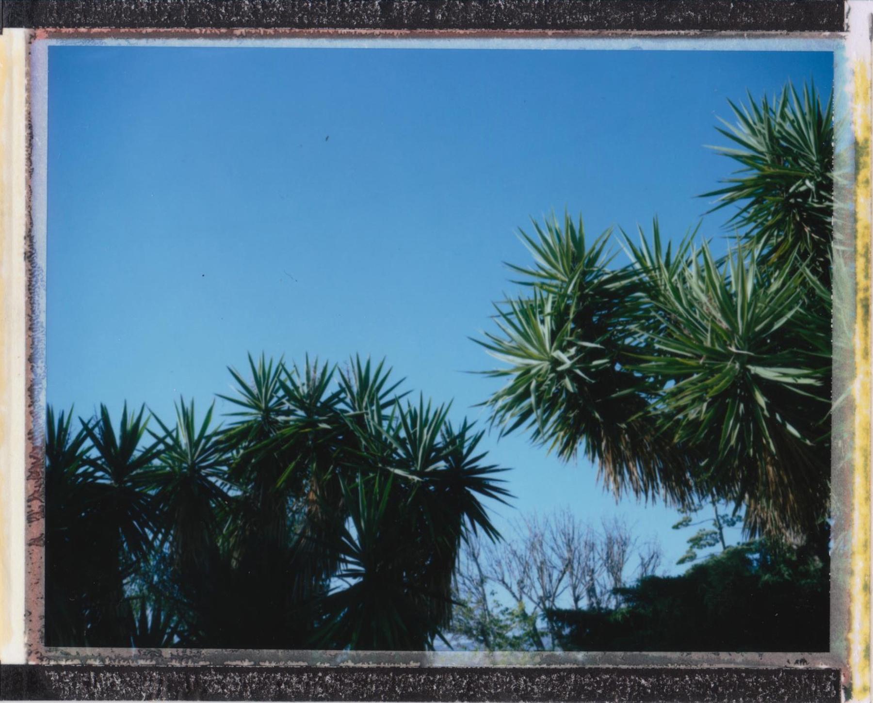 Sylmar, California