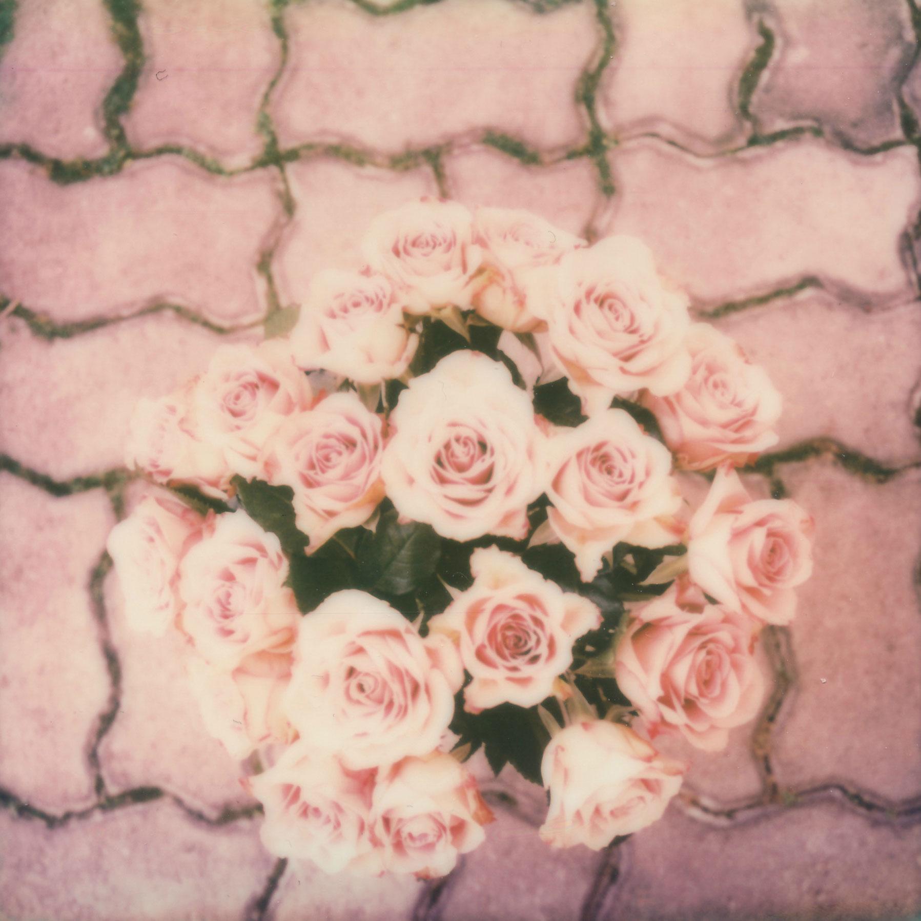 roses_sx70_sarabucher.jpg