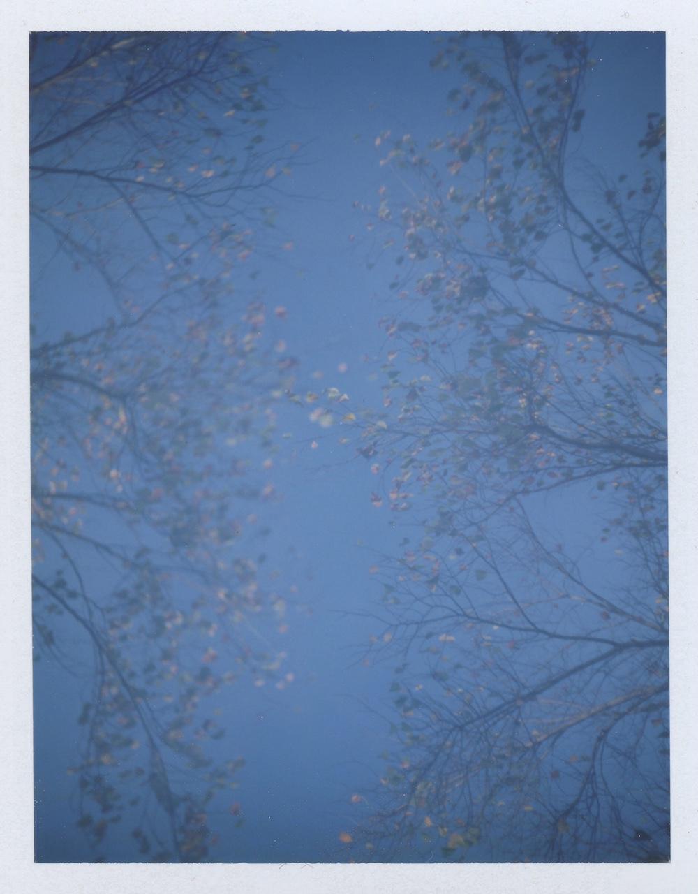 All images Polaroid Colorpack, Fuji FP100C film