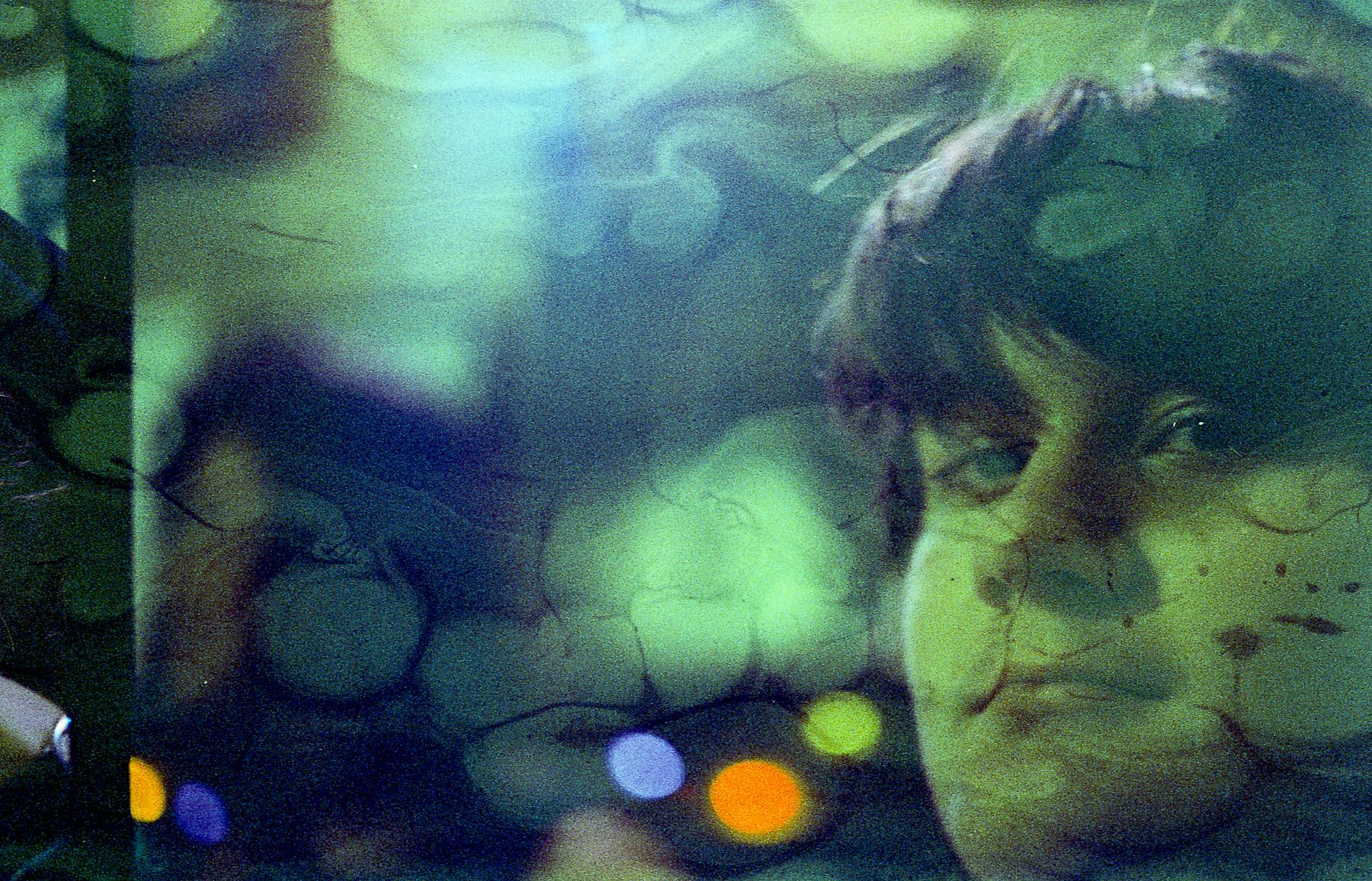 Untitled | Leica flex SL | Cinestill800 | Ruby Berry
