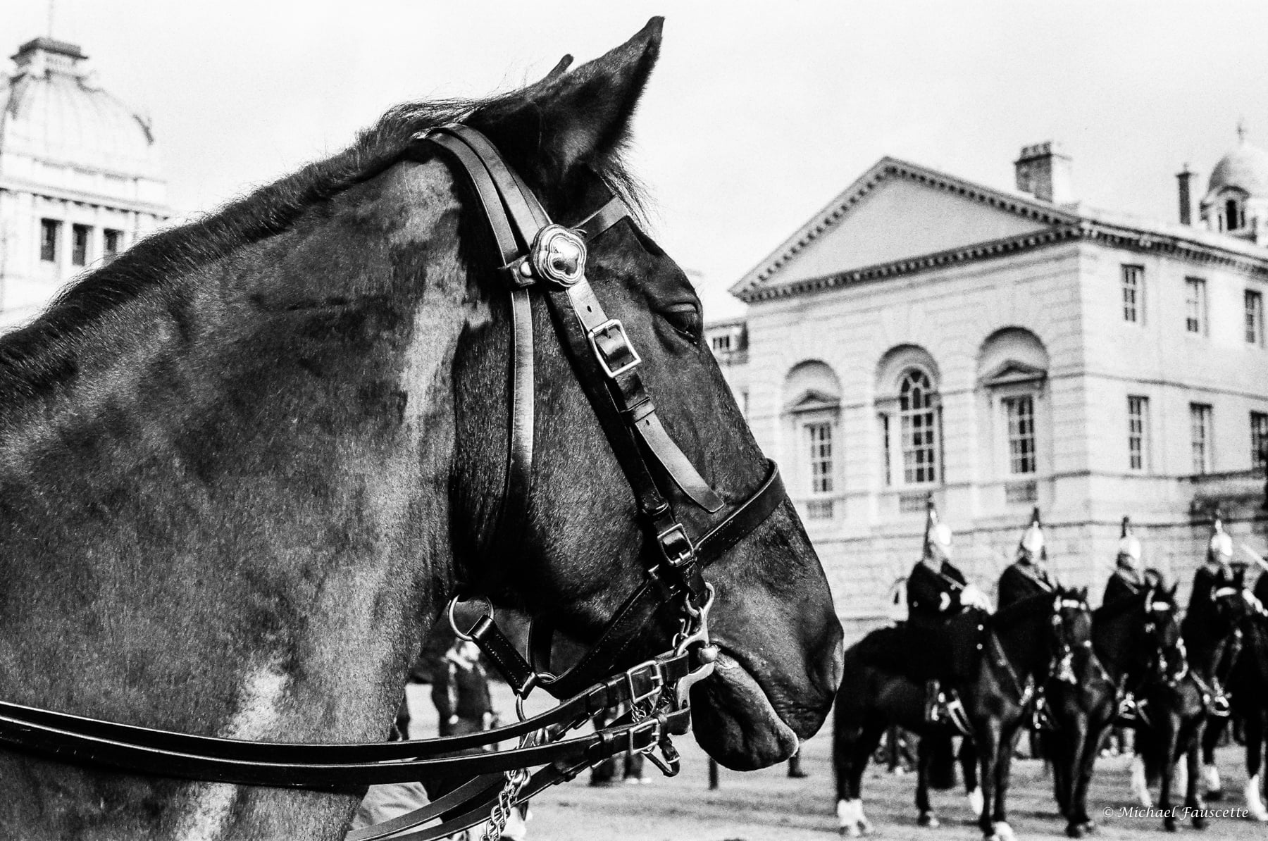 changing the guard | Leica M6 | Leica Elmarit 90 | michael fauscette