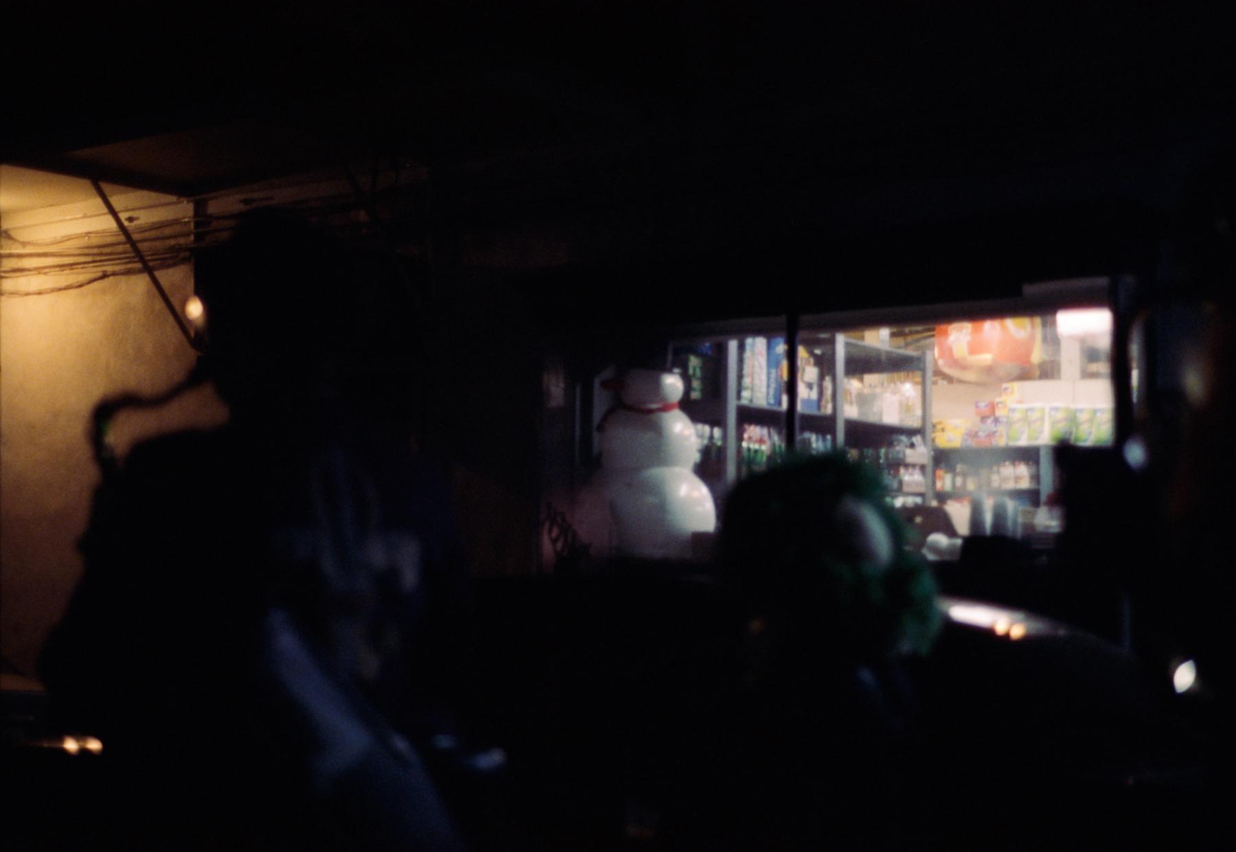 snowman and shop window  sm (1 of 1).jpg