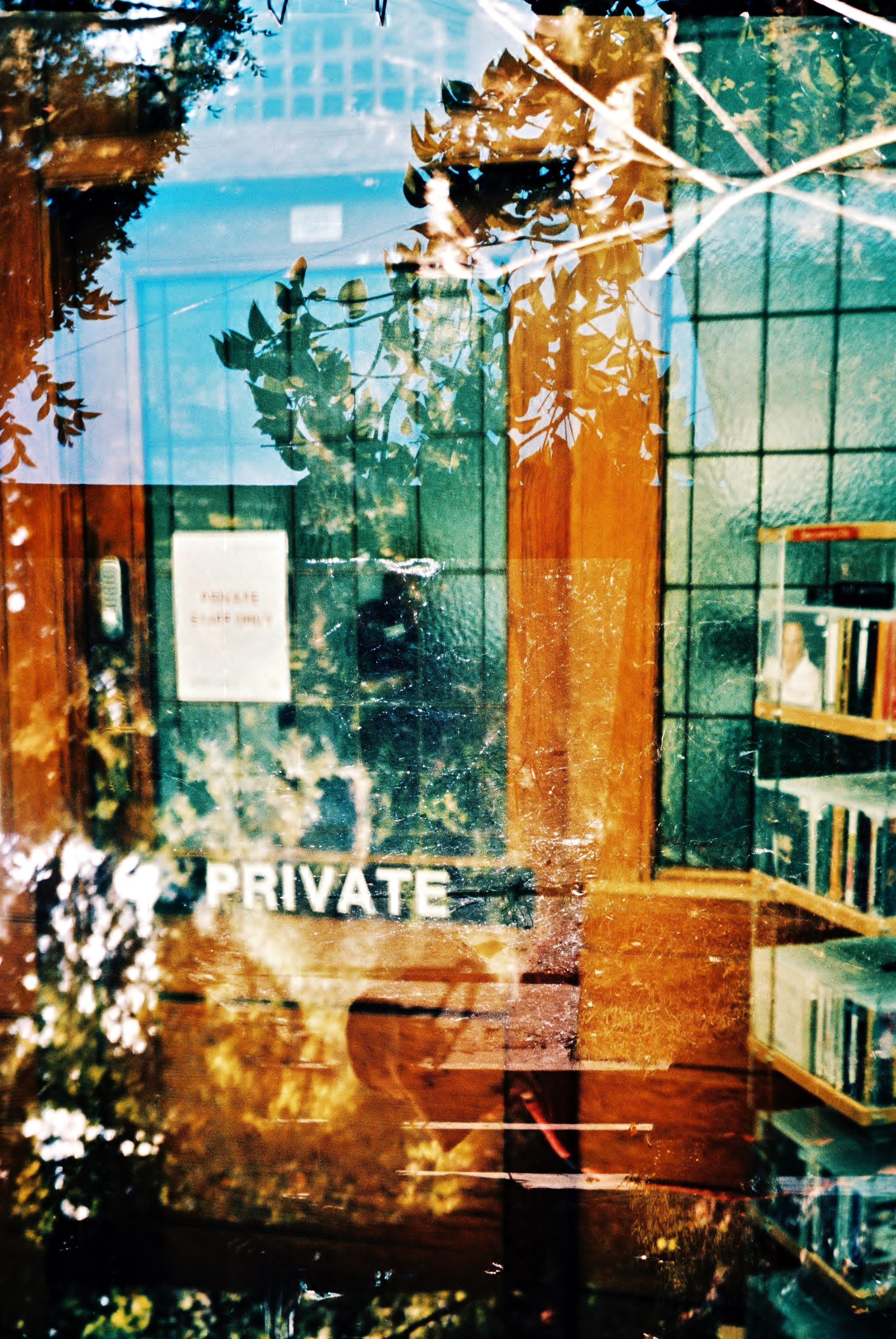 Hidden Intentions | Olympus XA4 | Lucy Wainwright