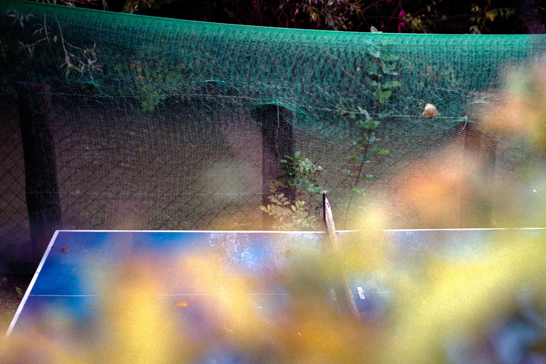 Gabor Dobrocsi | Blue Table | Leica M2 | Zeiss Sonnar 50mm
