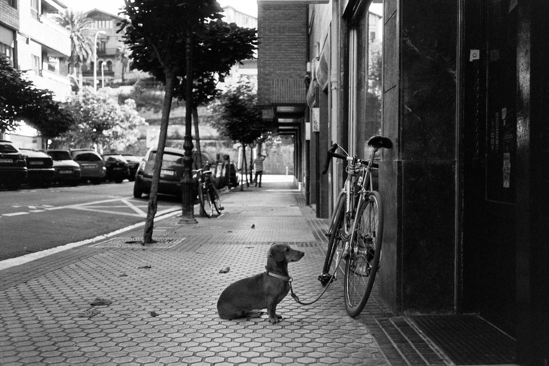 Almost Time | Leica M6 | Zeiss C Biogon 35mm f2.8 | Fomapan 400 | Lilly Schwartz