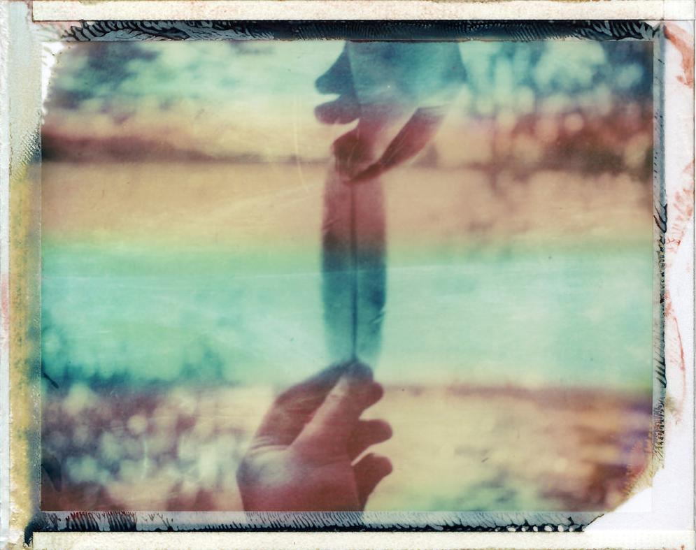 "Loss of Light - ""Daydream"""