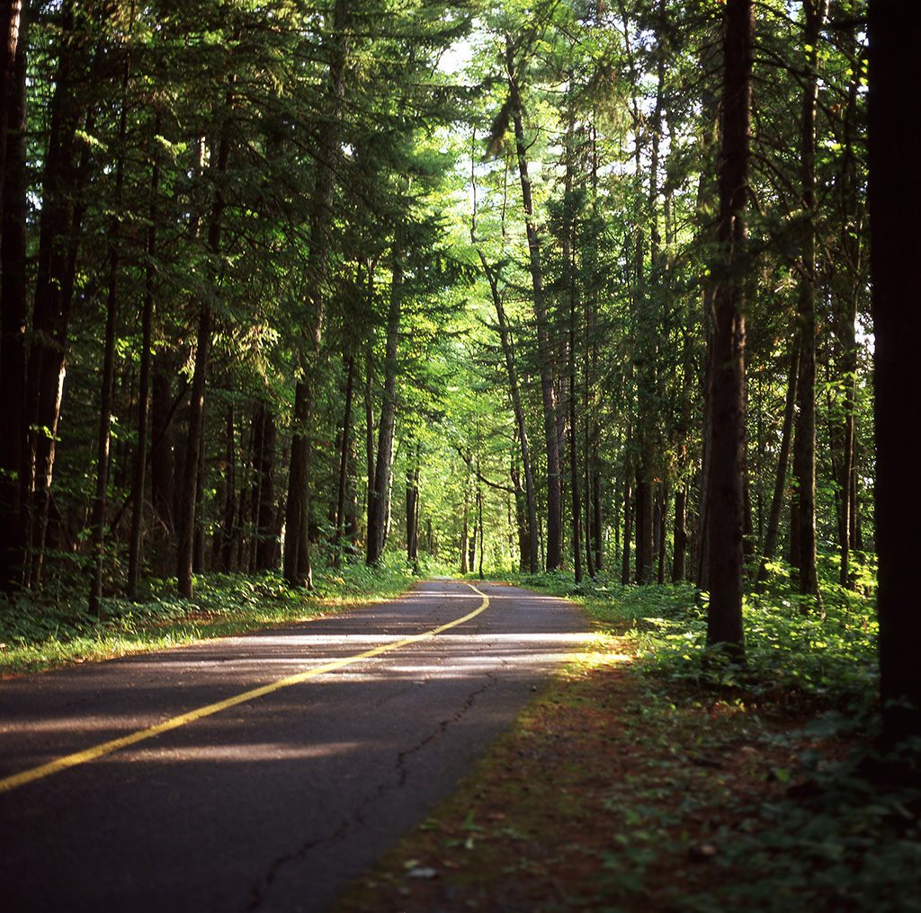 The Road Less Travelled | Hasselblad 500 | Fuji Velvia | Marc Nagainis