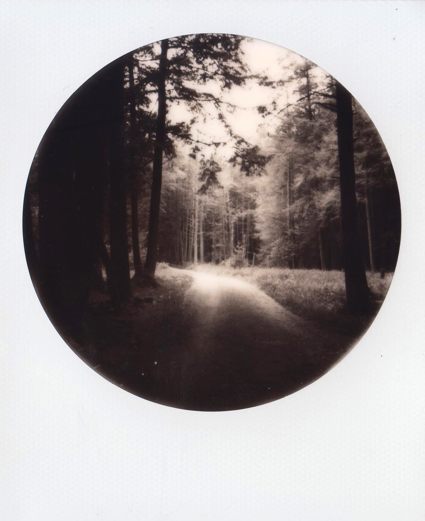 Pilgrimage | SX-70 Impossible Project Black & White 2.0 film | Abigail Crone