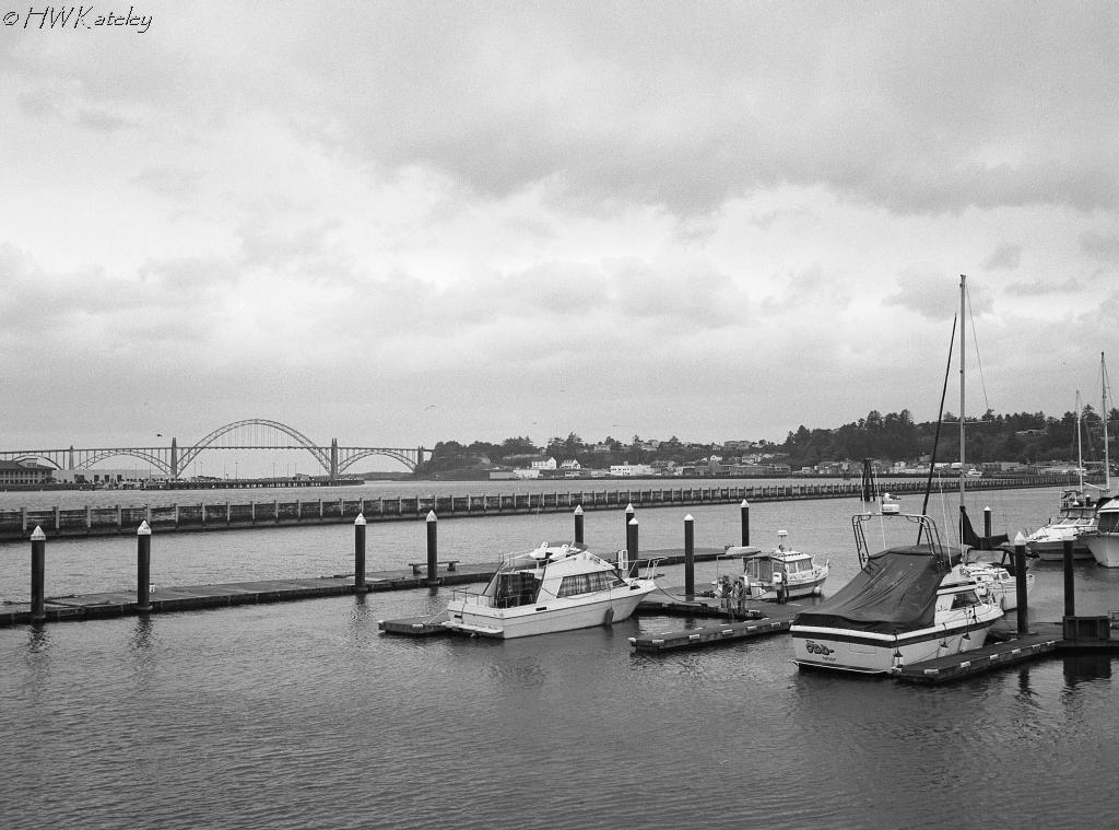 Coastal Marina – Kodak Tri-X