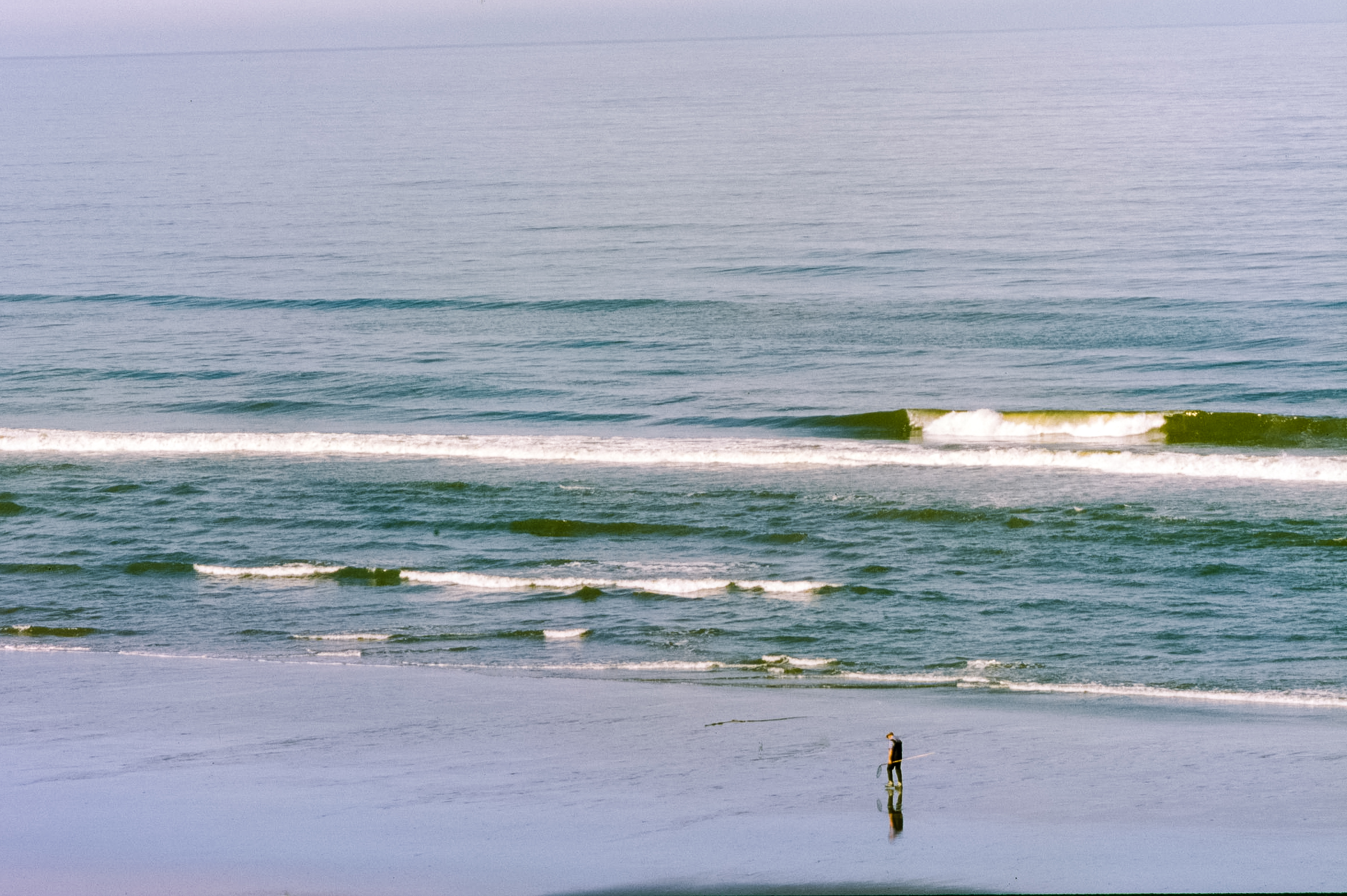 Early as birds | Pentax MX | Kevin Rosinbum