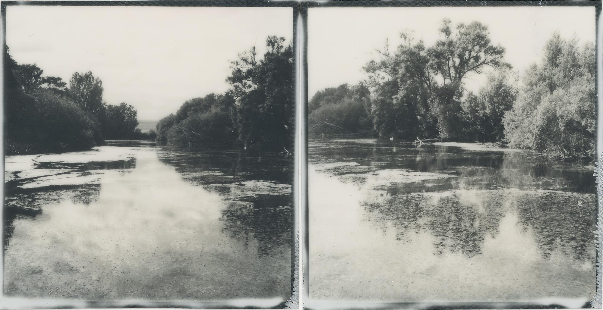 Swan Pond | SX-70 | Impossible Project Gen 2 Film | Mark Hillyer |