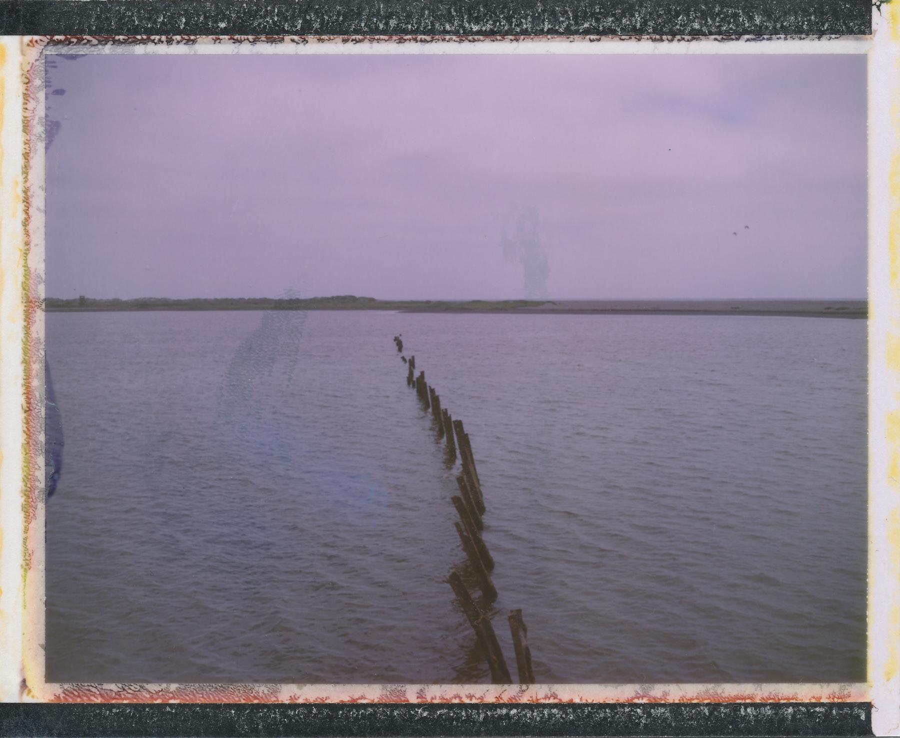 Untitled | Polaroid Land Camera | Fuji FP100C | Celeste Ortiz
