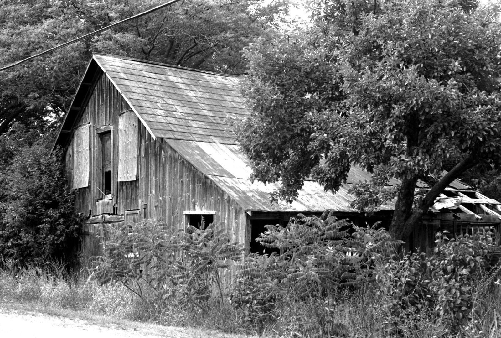 Cabin BW.jpg