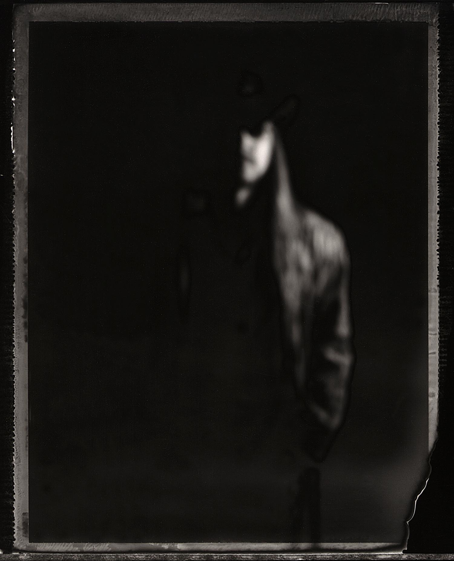 Scotty Boy McCoy | Graflex XL | Polaroid Type 665 | Michael Kirchoff