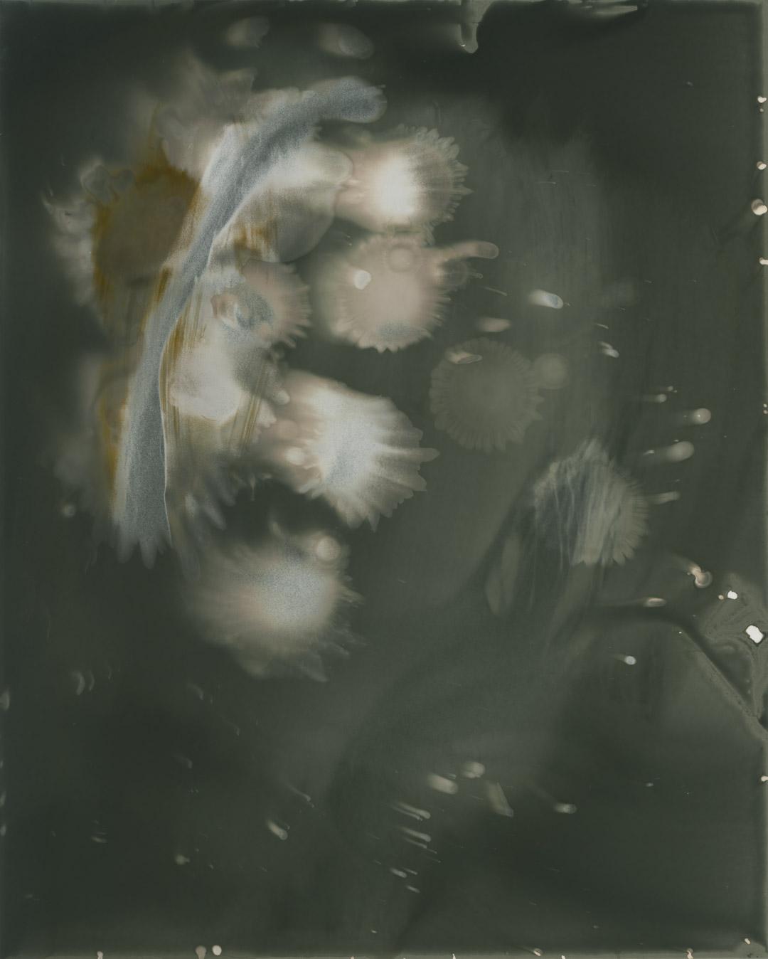 The Apparition | Leica M4 | TriX | Ralph Whitehead