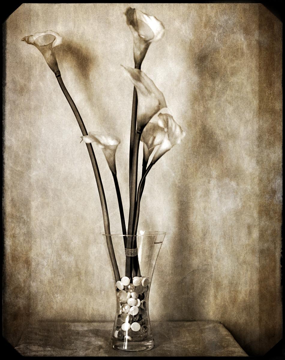 Bobby Kulik | Flowers | B&J 4x5