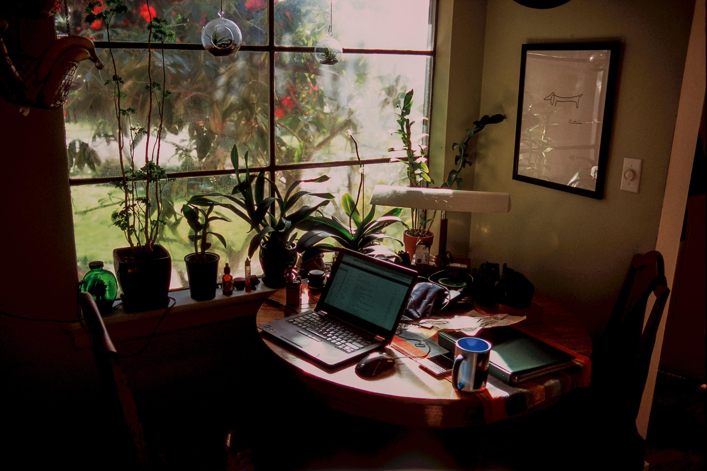 Kevin Rosinbum  | Light Office Hours | Pentax MZ-S | Velvia 100F