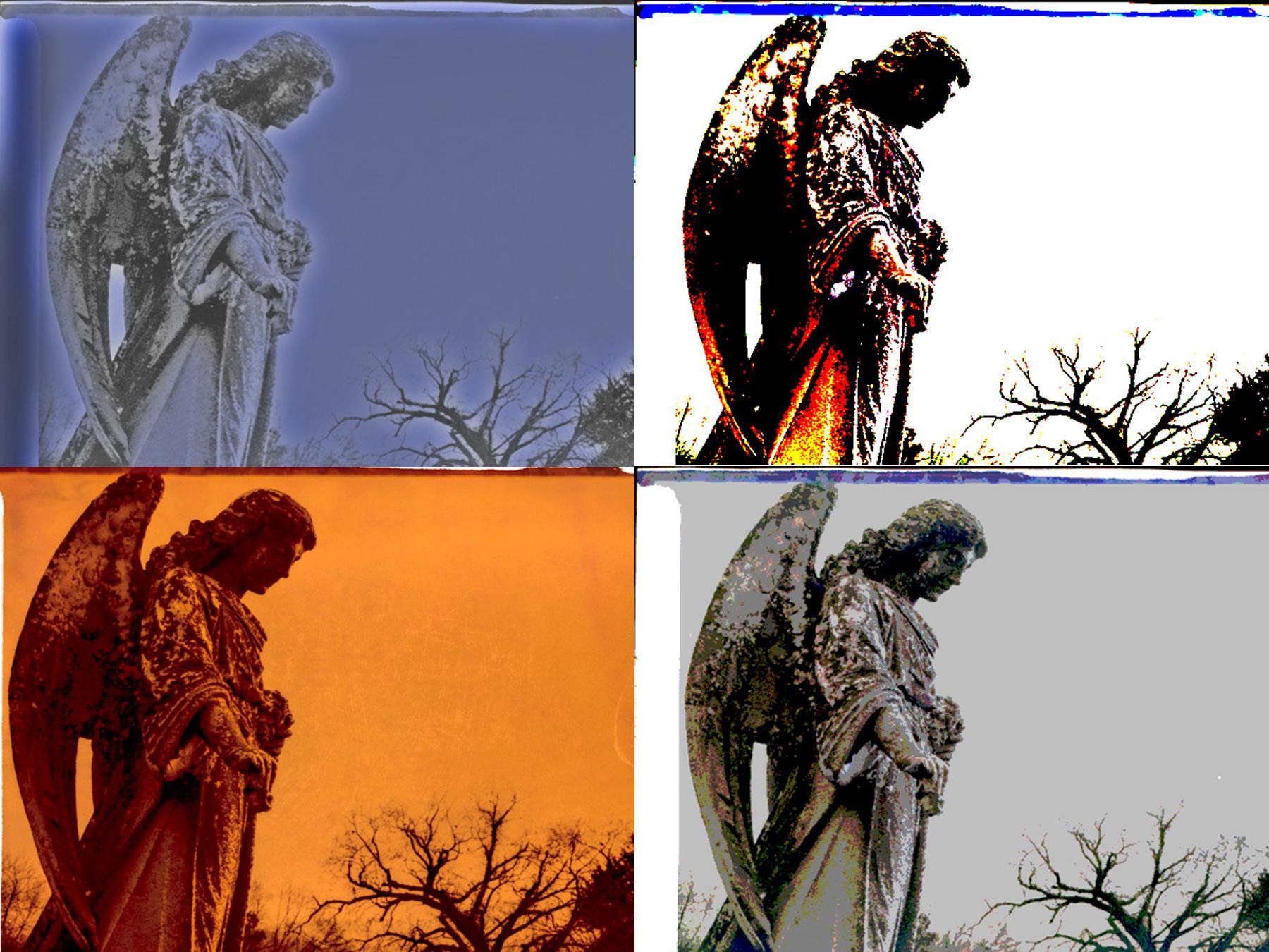 Cedar Grove Angel | reclaimed negative | fp-100c | Victor Perrotti