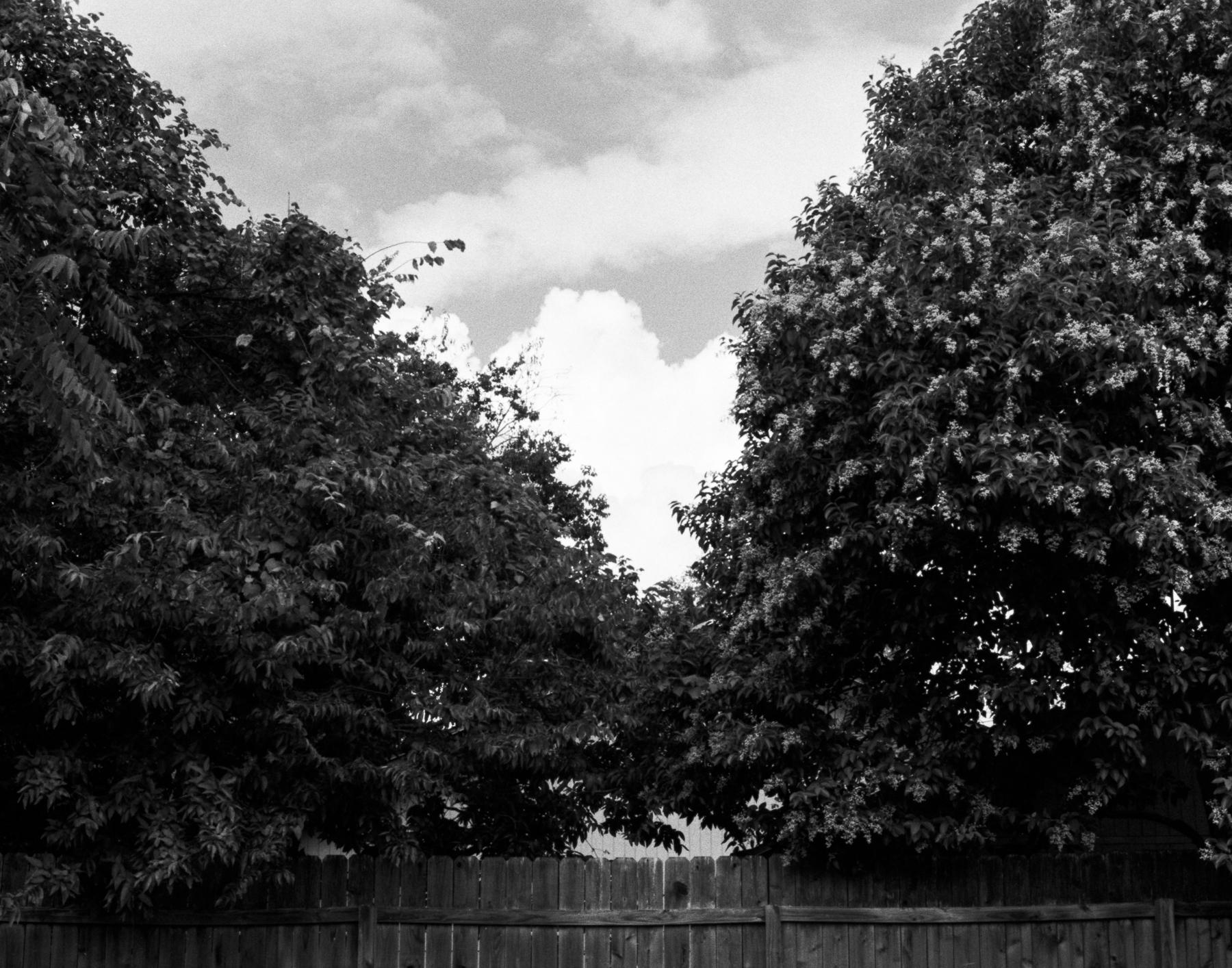 texas-photographer-film-06.jpg