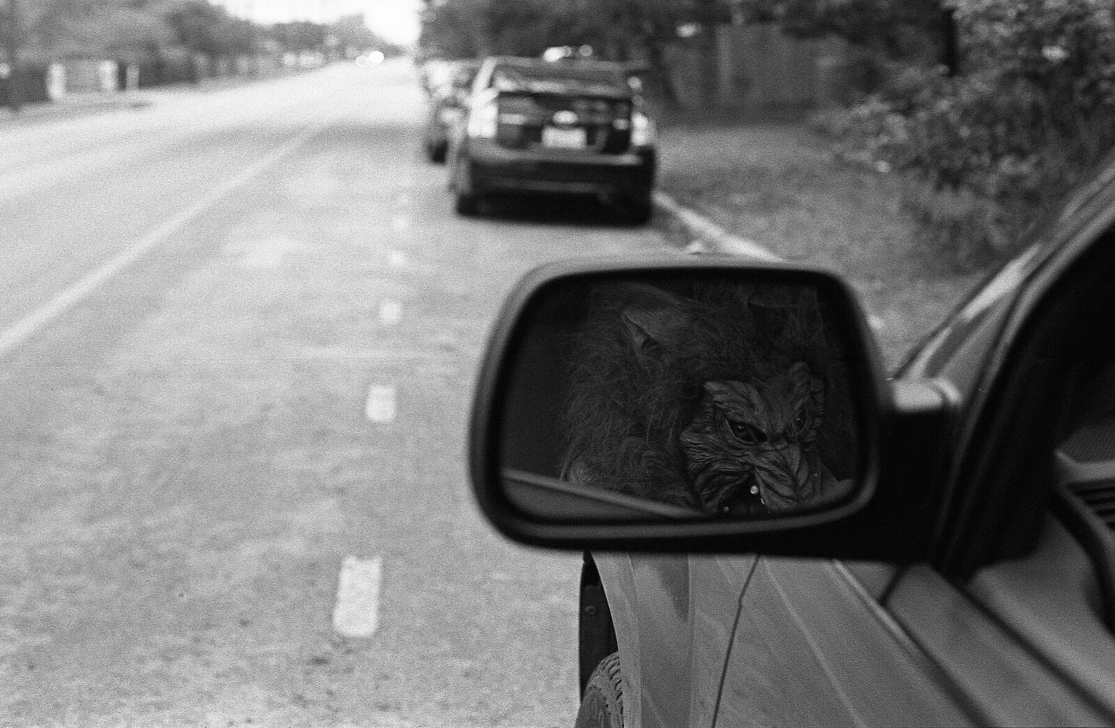 Werewolves of Austin | Nikon F | Kodak Tri-X | Amy Jasek