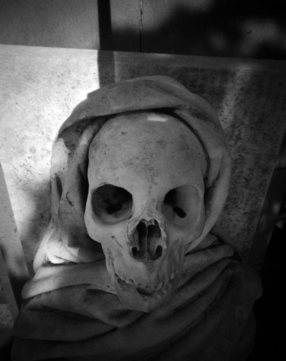 Skull  | 4x5 pinhole  | fomapan 100  | Jesús Joglar
