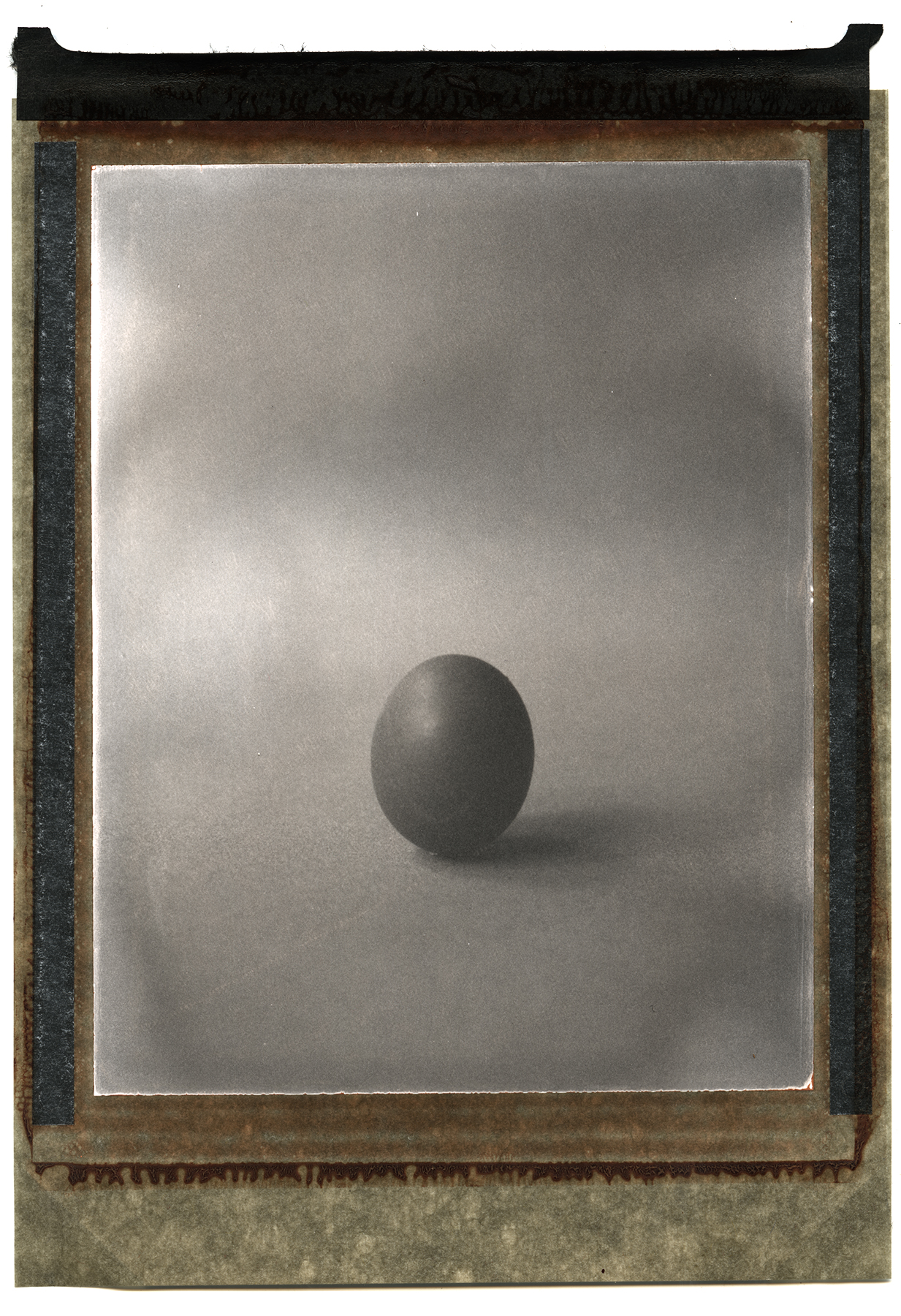 Beyond the Egg | Chamonix 4x5 | Polaroid Type 5 | Davide Maria Ferrari