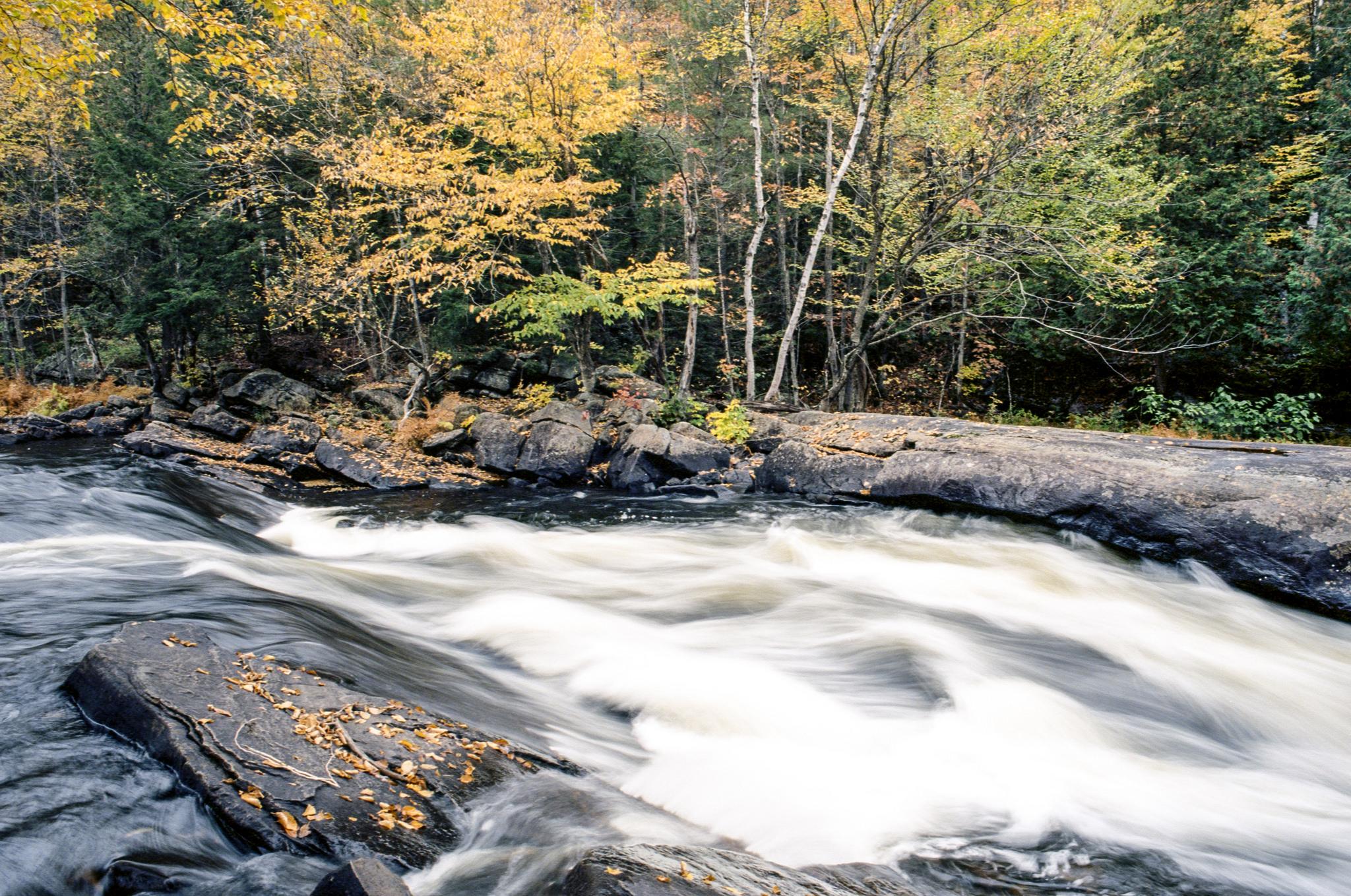 Bill Smith | Oxtongue Rapids | Nikon F3HP | 105 f2.5 AIS Nikkor | Kodak Ektar 100