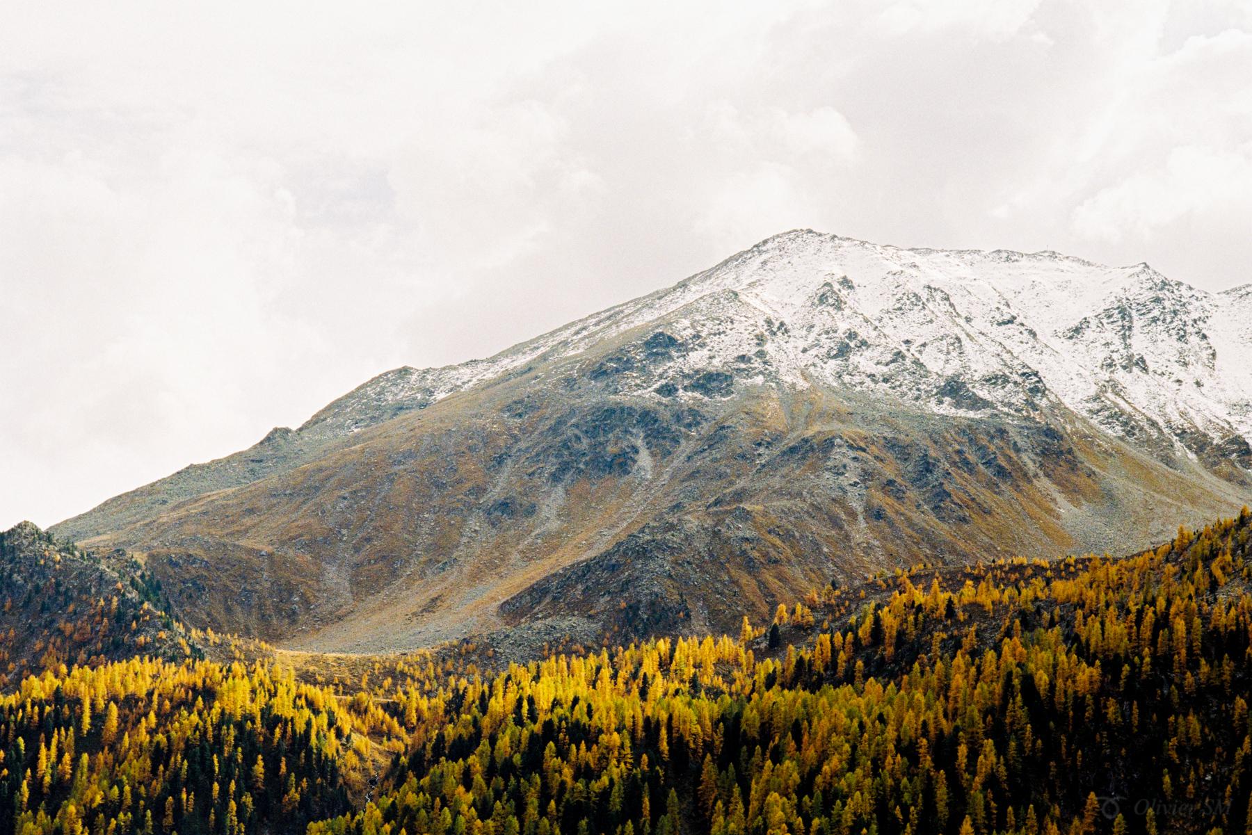 Olivier Meier | Swiss Autumn | Nikon FM3A | Nikkor 50mm f1.2 | Kodak Ultramax 400