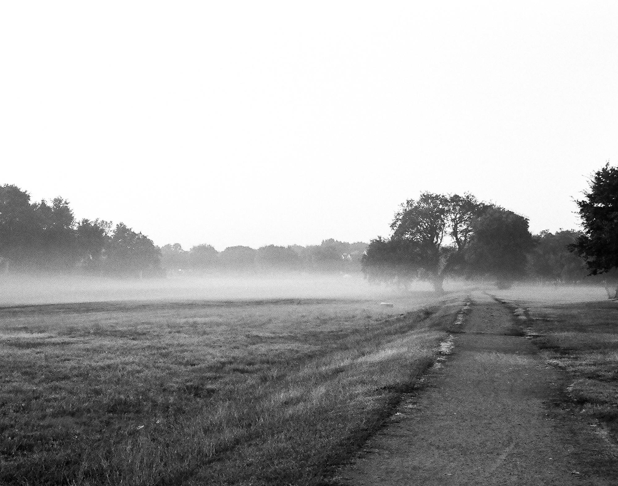 morning mist |Chris Ullrich